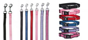 Reflective Dog Collar Sets